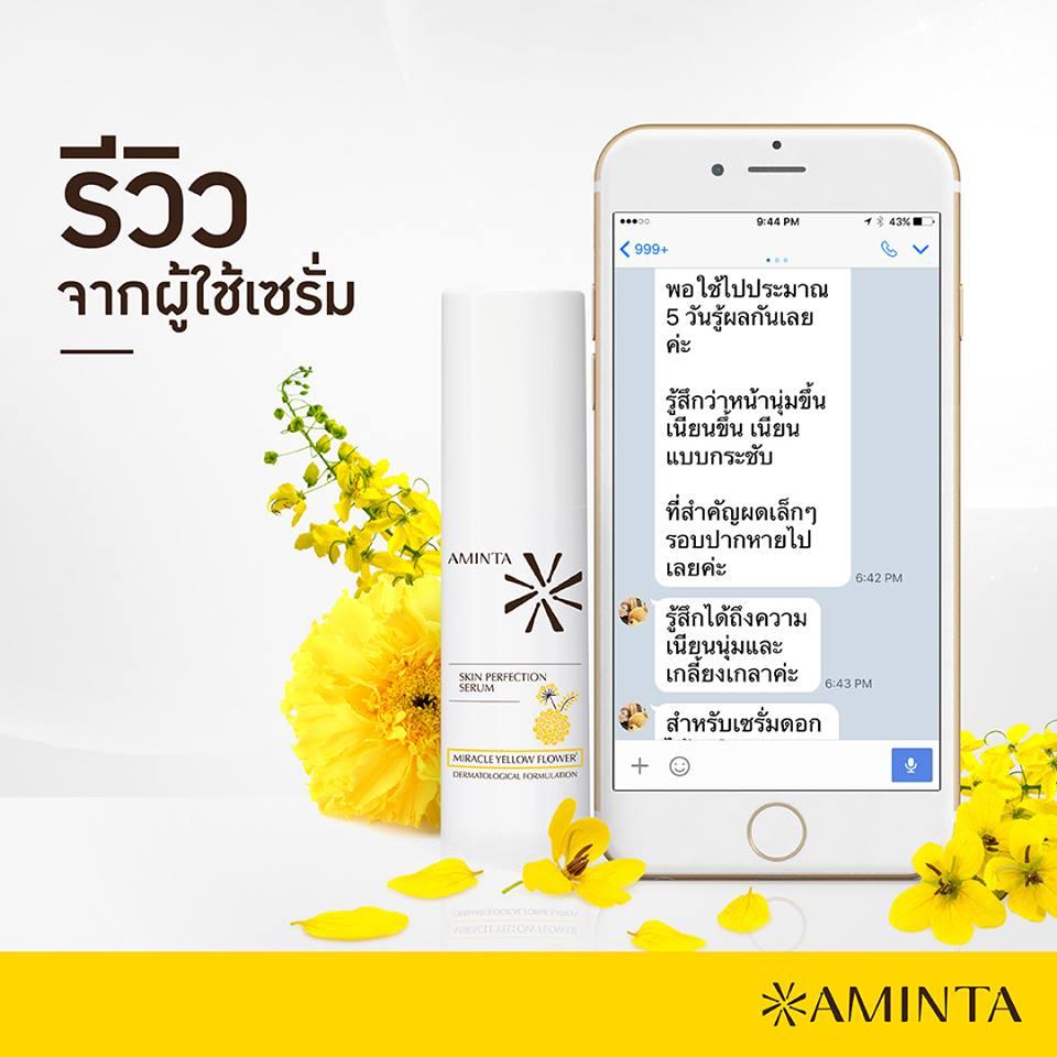 เซ็ท 6 ขวด Aminta Skin Perfection Serum